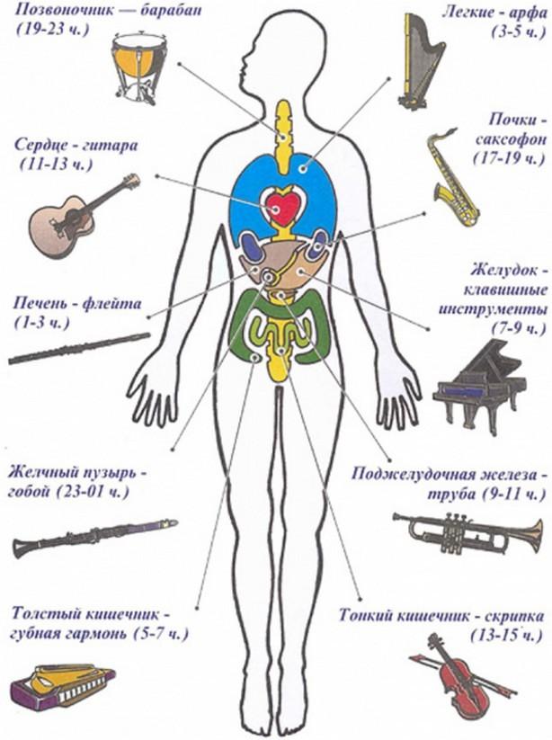 музыкальные интсрументы для лечения болезней
