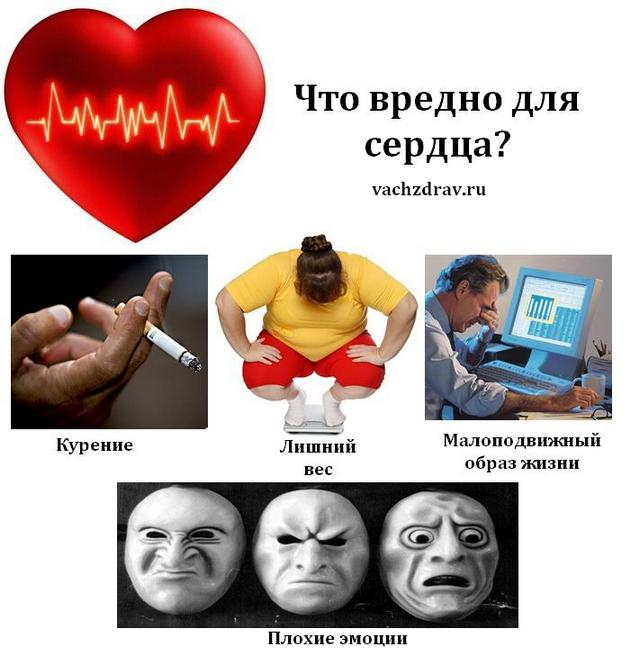Что вредно для сердца