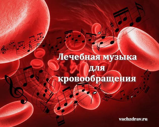 Музыка для кровообращения
