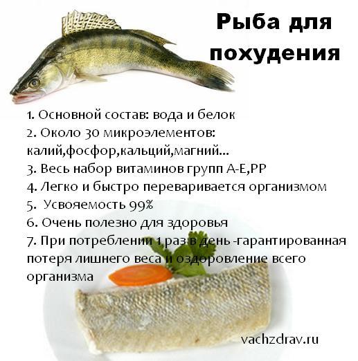 Рыба для похудения -легко усваиваемый белок, нормализующий обмен веществ